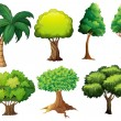 Tree set — Stock Vector #52593843