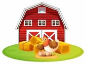 Chicken and barn — Stockvector