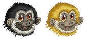 Gibbon faces — Stock Vector