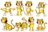 Tiger set — Stock Vector