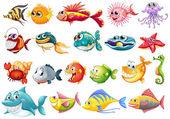 Fish set — Stock Vector