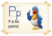 Letter P — Stock Vector