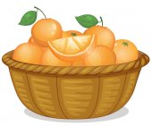 Basket of oranges — Stock Vector
