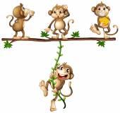 Monkeys swinging — Stock Vector
