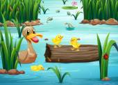 A pond with happy animals — Stock Vector