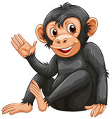 A chimpanzee — Stock Vector