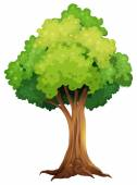 A giant tree — Stock Vector