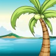 Coconut tree and ocean — Stock Vector #53282473