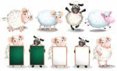 Sheep set — Stock Vector