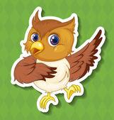 Owlet — Stock Vector