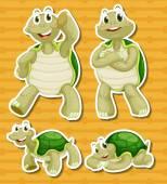 Turtle set — Stock Vector