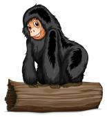 Chimpanzee — Stock Vector
