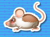 A rat on a blue background — Stock Vector