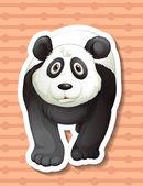 Panda — Stok Vektör