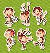 Monkeys set — Stock Vector