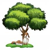 Dog under tree — Stock Vector