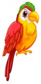 Parrot Illustration — Stock Vector