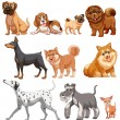 Dogs Illustration — Stock Vector #54093195