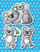 Koala Illustration — Stock Vector
