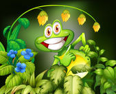 Frog and flower — Stock Vector