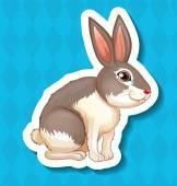 Rabbit Illustration — Stock Vector