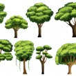Tree set — Stock Vector #54598241