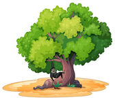 Gibbon and a tree — Stock Vector