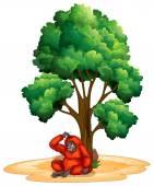 Tree and orangutan — Stock Vector