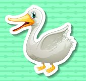 Duck — Stock Vector
