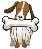 Dog bone — Stock Vector