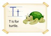 A letter T for turtle — Stock Vector