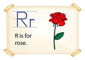 Ein buchstabe r für rose — Stockvektor