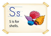 A letter S for shells — Stock Vector