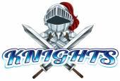 Knights — Stock Vector