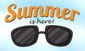 Summer is here — Stock Vector
