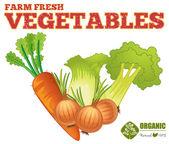 Farm fresh vegetables — Stock Vector