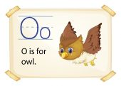 A letter O for owl — Stock Vector