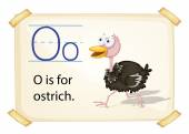 A letter O for ostrich — Stock Vector