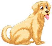 A dog panting — Stock Vector