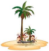 Monkeys and island — Stock Vector