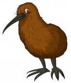 Kiwi bird — Stock Vector