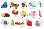 Insects — Stock Vector