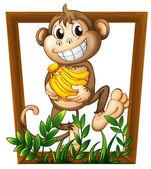 Monkey and banana — Stock Vector