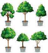 Plant — Vettoriale Stock