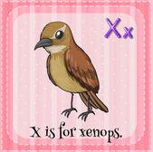 A letter X — Vetorial Stock