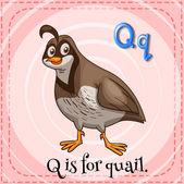 A letter Q — Vetor de Stock
