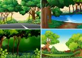 Four scenes of forest — Stock Vector