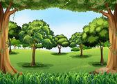 Forestal — Vector de stock