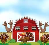 Сельскохозяйственные животные — Cтоковый вектор