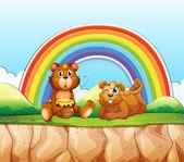 Bears and rainbow — Stock Vector